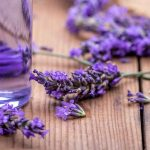 Other uses of Lavender